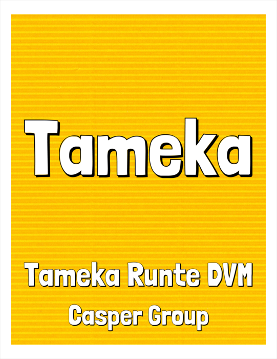 nametag name badge template for Avery 5165, Avery 5264, Avery 5664, Avery 6464, Avery 8164, Avery 8254, Avery 8464 Compatible Template